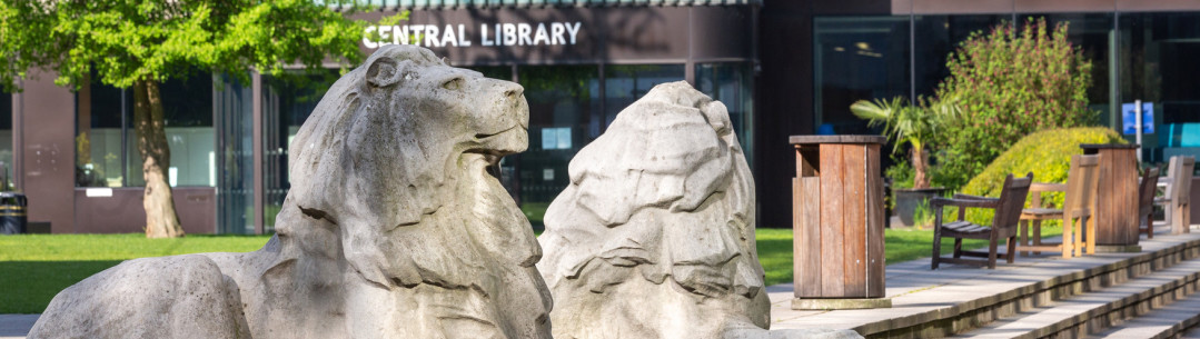 Lions Central library