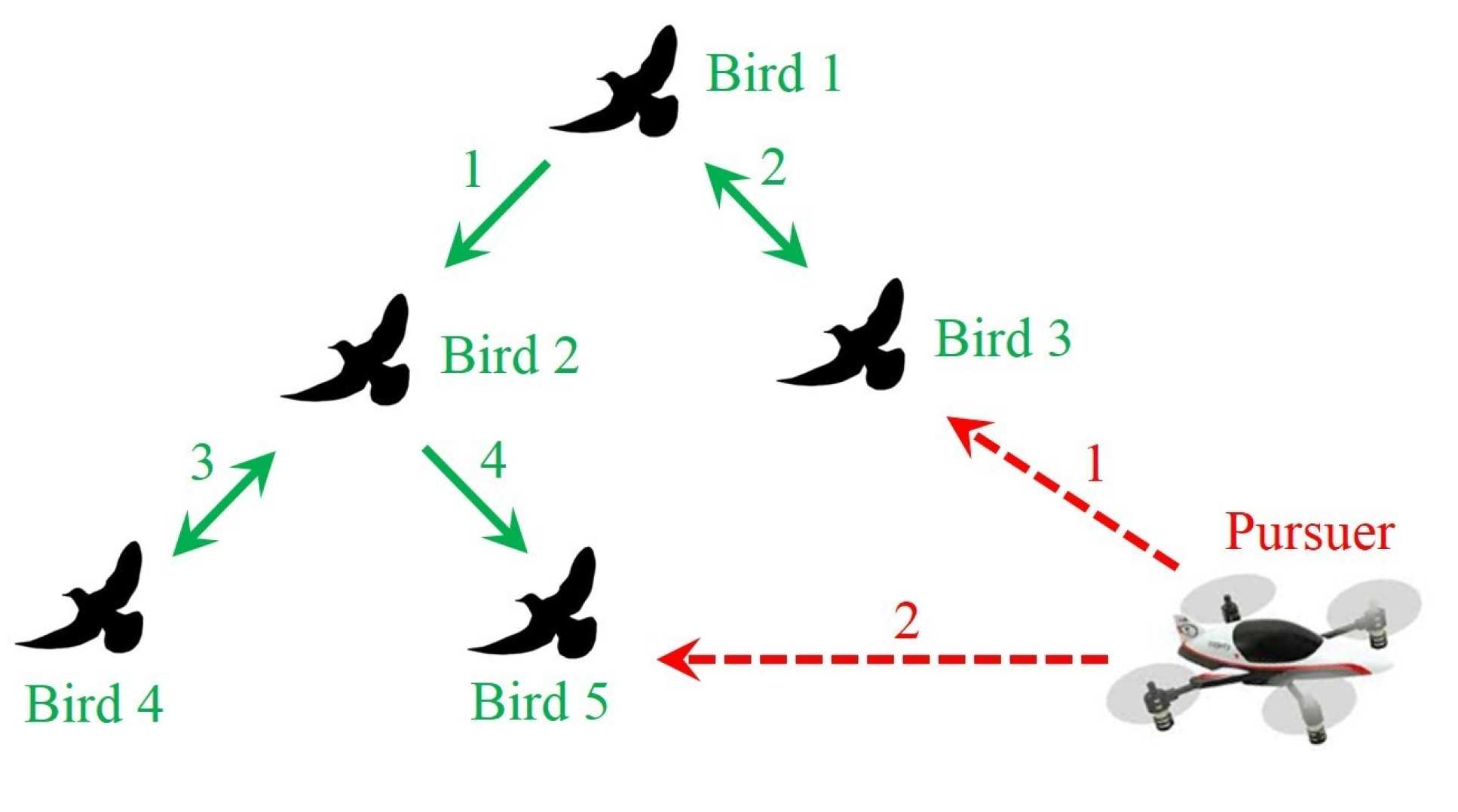 An illustration of how the bird herding drone works