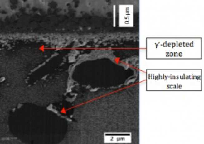 Surface microstructure of an oxidised Co-Al-W superalloy