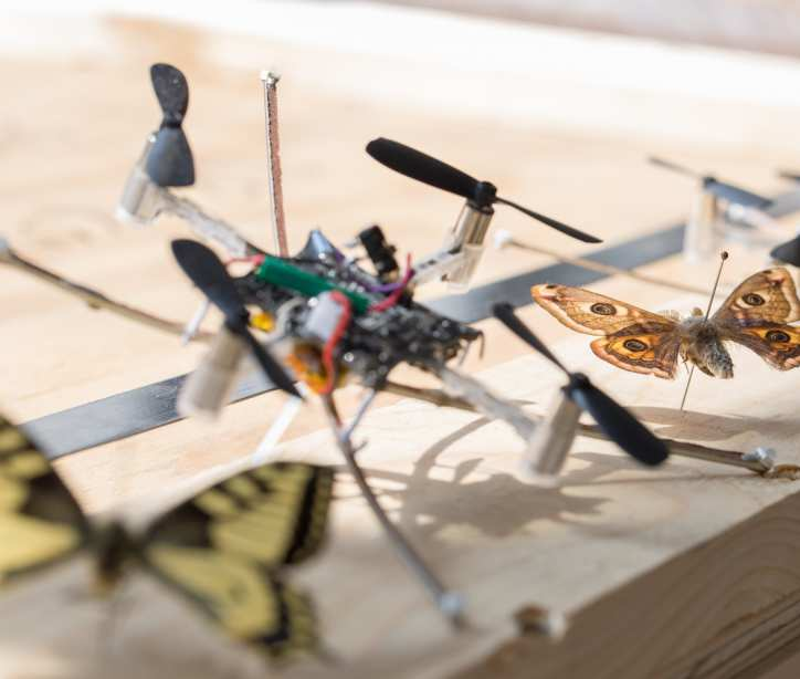 Insect-inspired robotic control