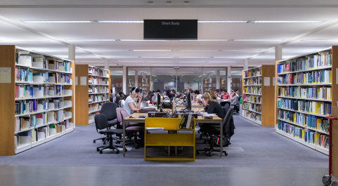 Staff study in the library