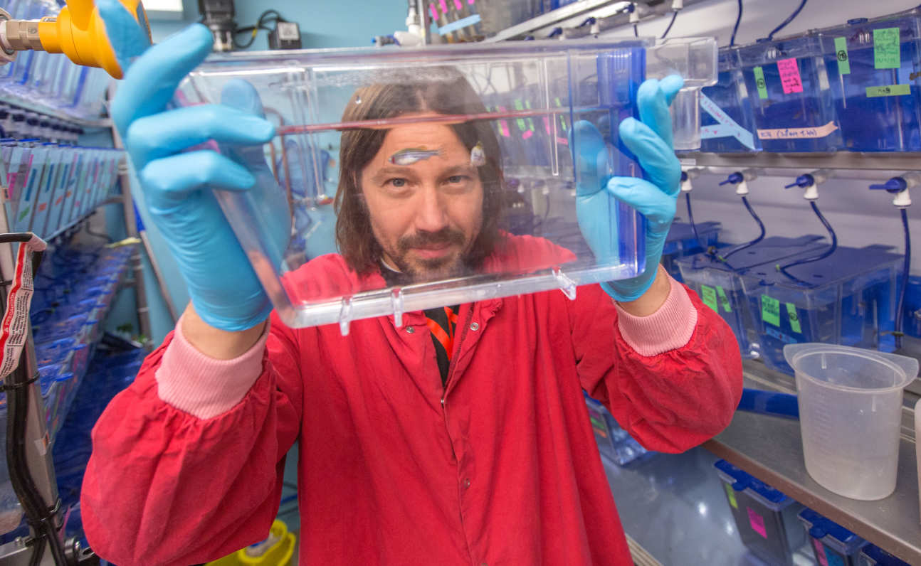 Dr Serge Mostowy with zebrafish