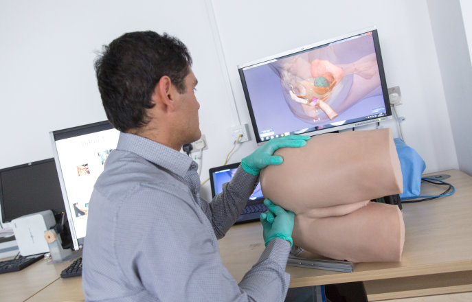 Haptic rectal examination training device