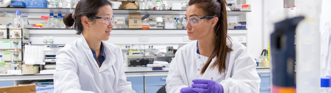 Two researchers working in a lab