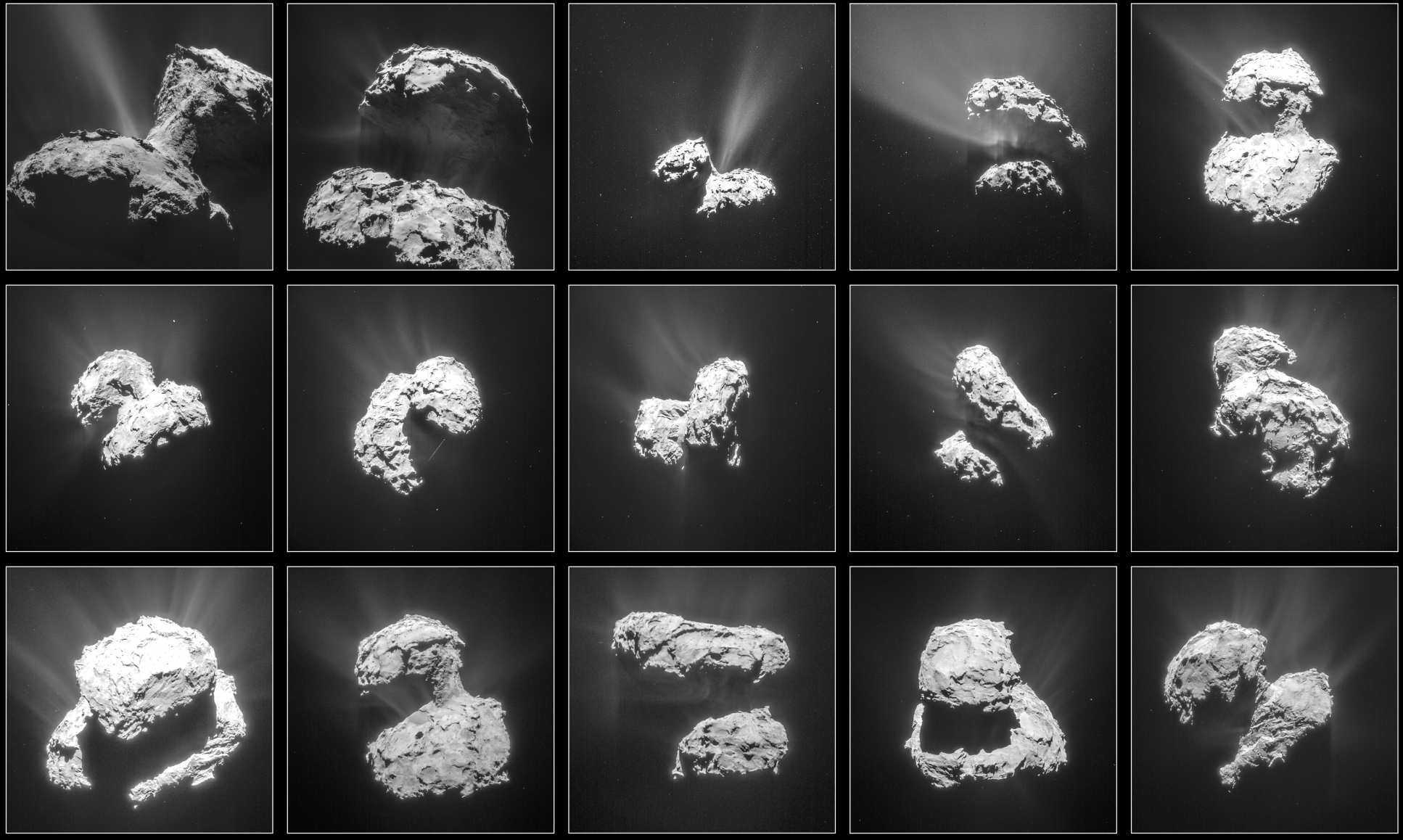 Grid of photos of the comet with a glowing halo