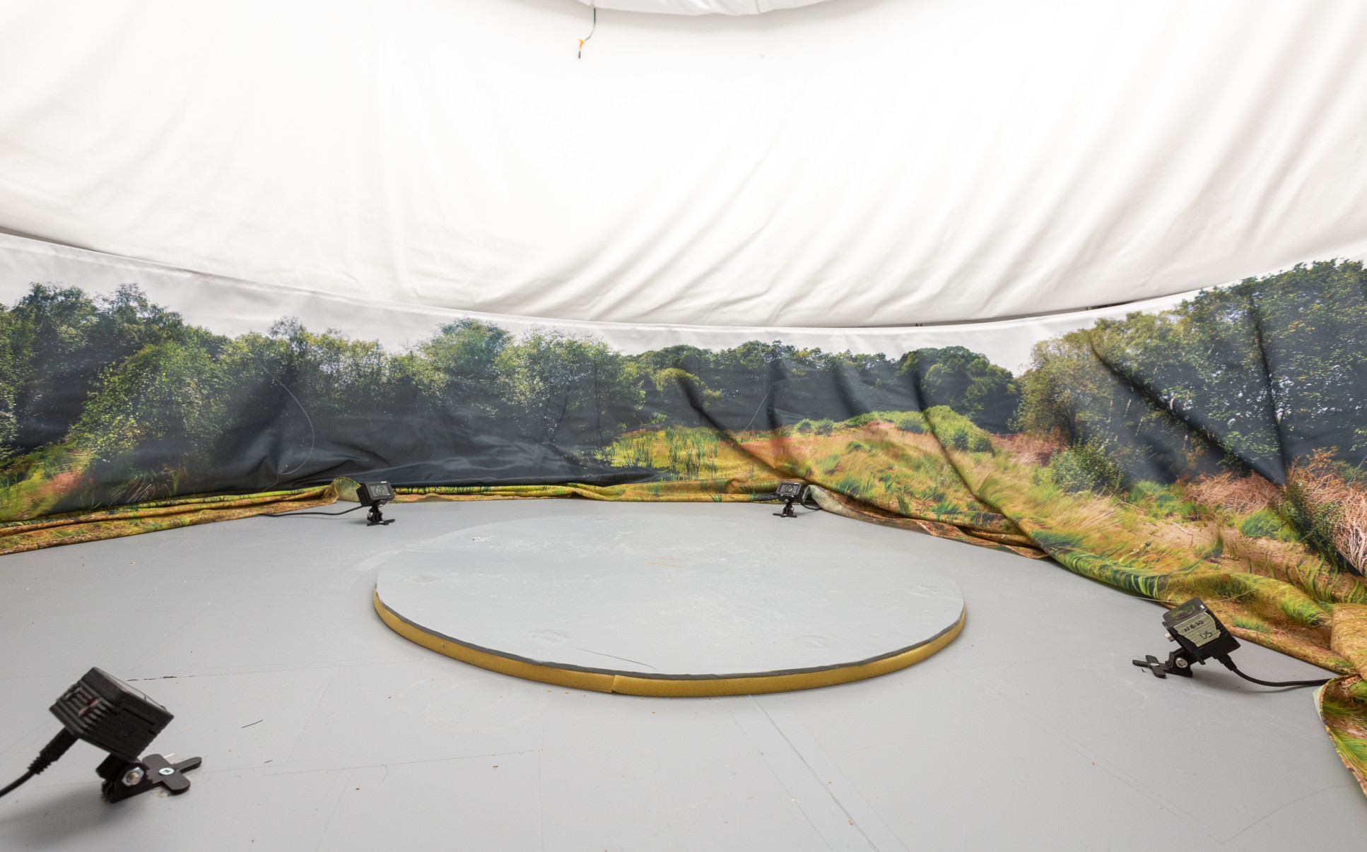 Photo of the dragonfly flight arena - a circular area with sides