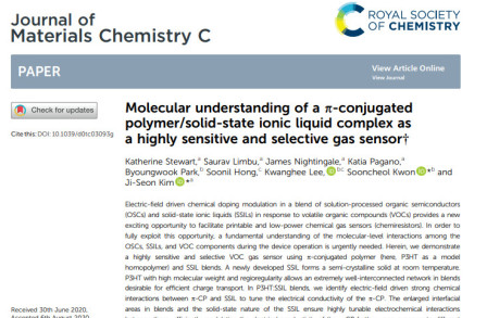 Molecular understanding of a π-conjugated polymer/solid-state ionic liquid complex as a highly sensitive and selective gas sensor