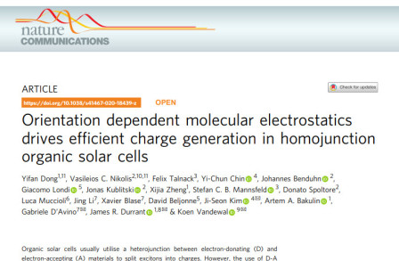 Orientation dependent molecular electrostatics drives efficient charge generation in homojunction organic solar cells