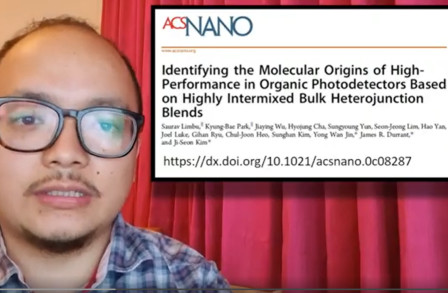 Identifying the Molecular Origins of High-Performance in Organic Photodetectors Based on Highly Intermixed Bulk Heterojunction Blends