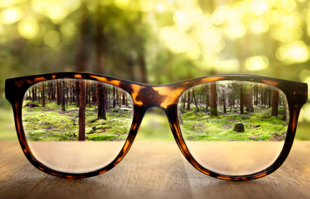 Photograph of nature seen through a pair of spectacles