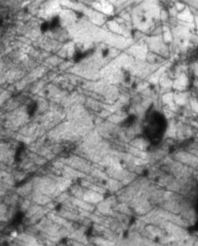 Dislocations revealed with TEM in zircalloy-4