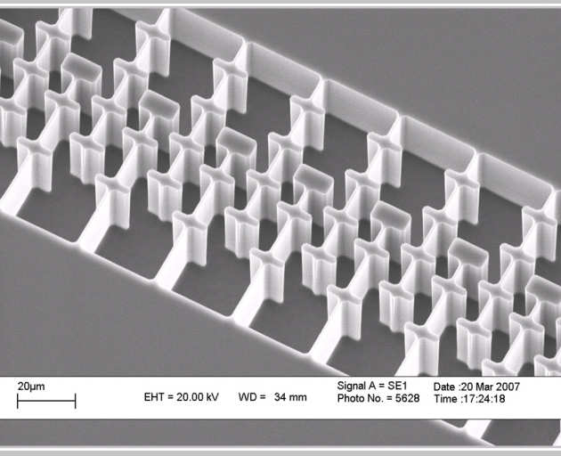 Fig. 3. SEM micrograph of comb drive structure