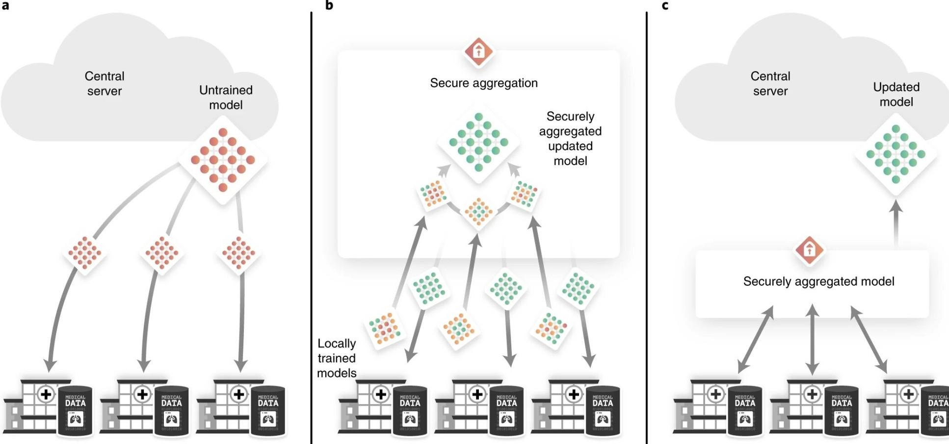 Diagramm mit einer Übersicht über die wichtigsten Datenschutztechniken: Nur Algorithmen, keine Patientendaten, zwischen Kliniken austauschen und sicheres Pooling.