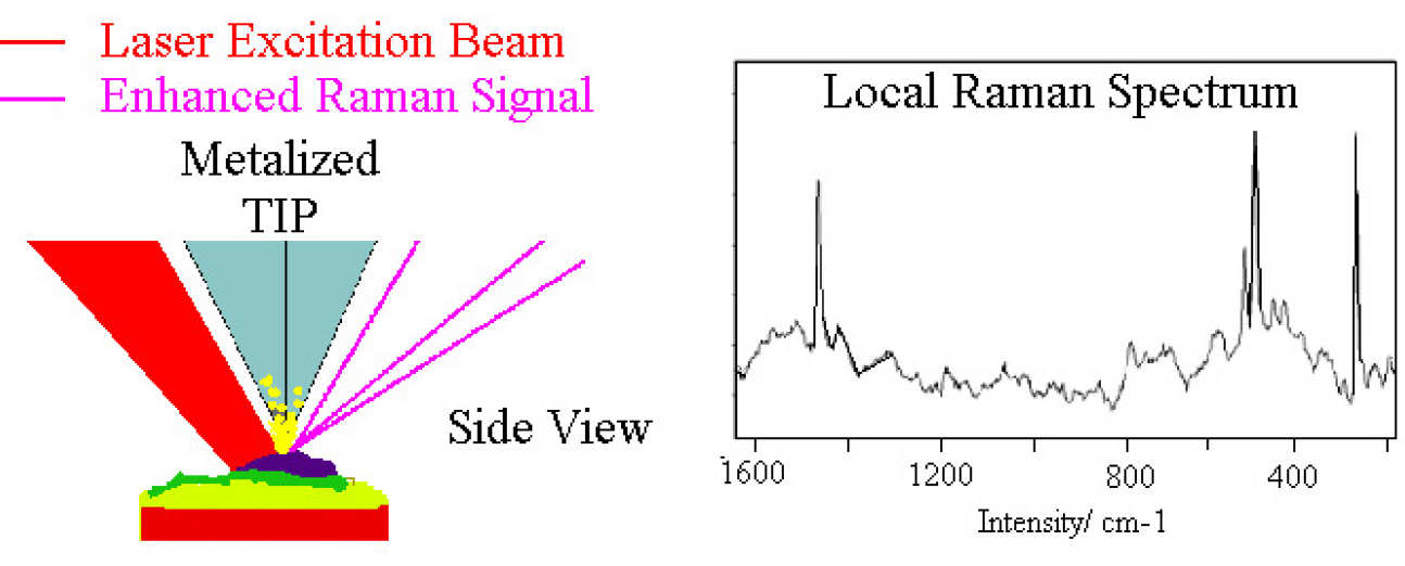 Side view of Raman-AFM, and local Raman