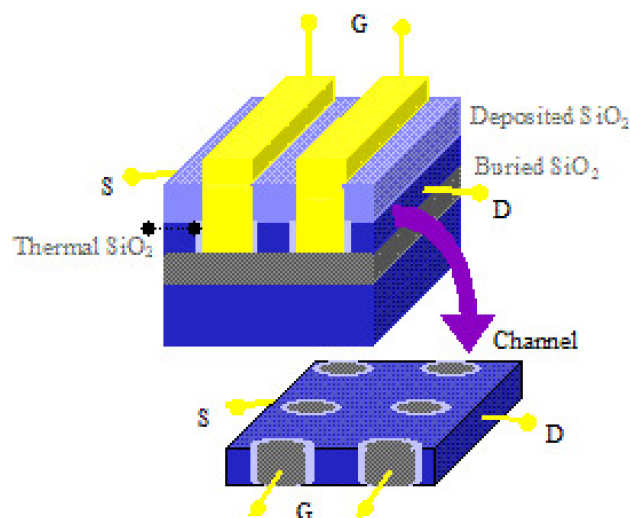Schematic configuration of embedded-gate 3D nano-FET