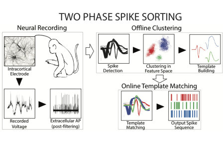 Improved Neural Spike Sorting Performance using Template Enhancement