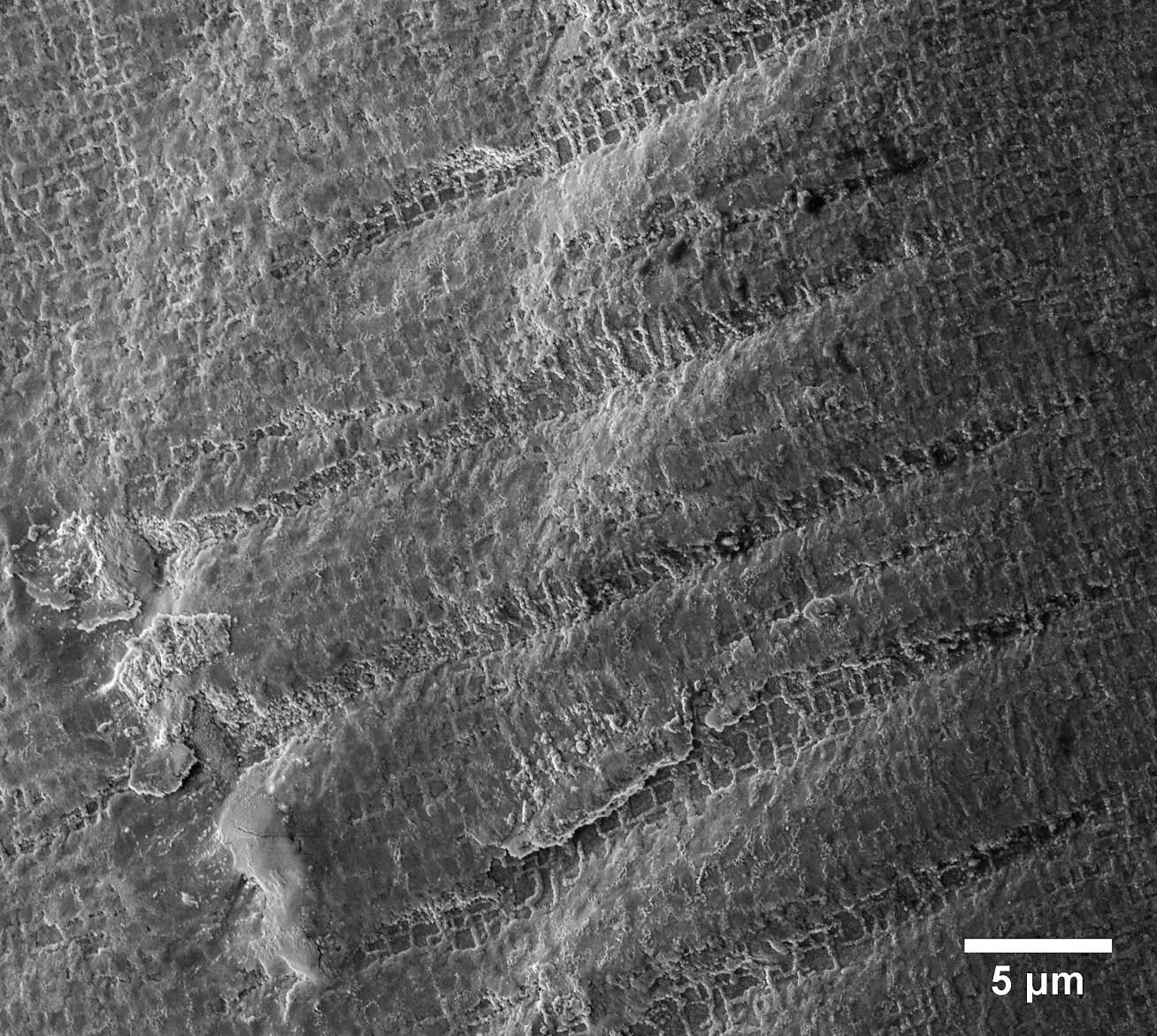 Fatigue striations in a nickel single-crystal after a rotating-bending fatigue test.