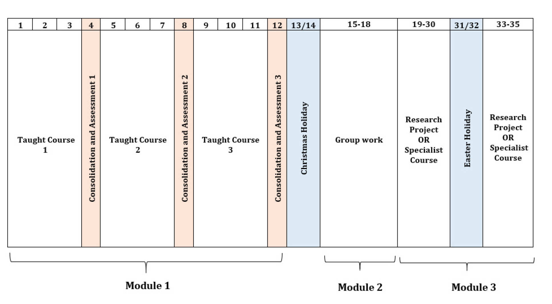 Chart showing an overview of the structure of the BSc in Global Health