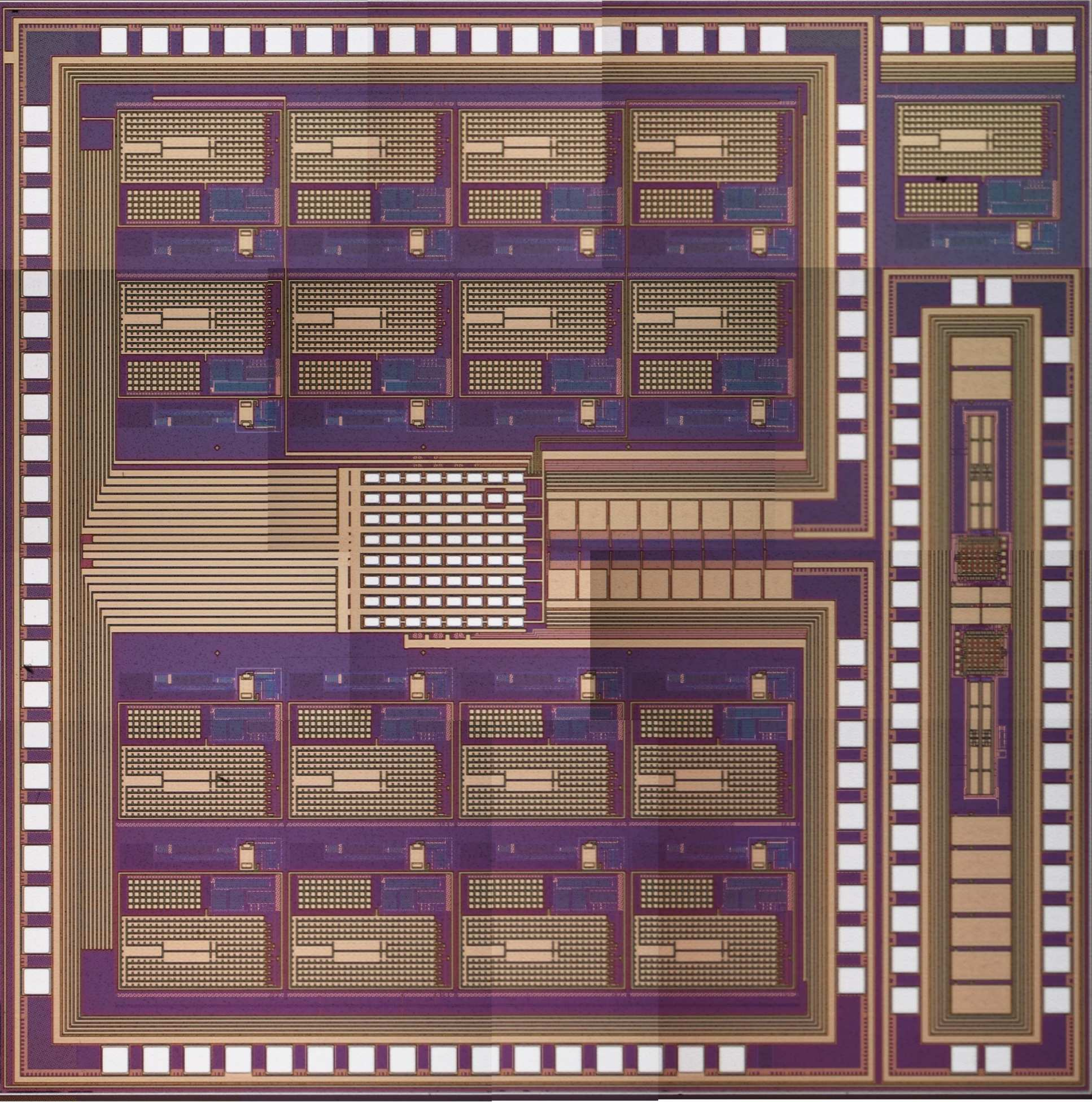 CBIT13G03 Thermal Lab-on-Chip for in-vitro ePhys