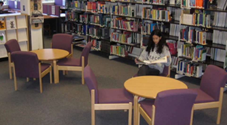 essay on college library