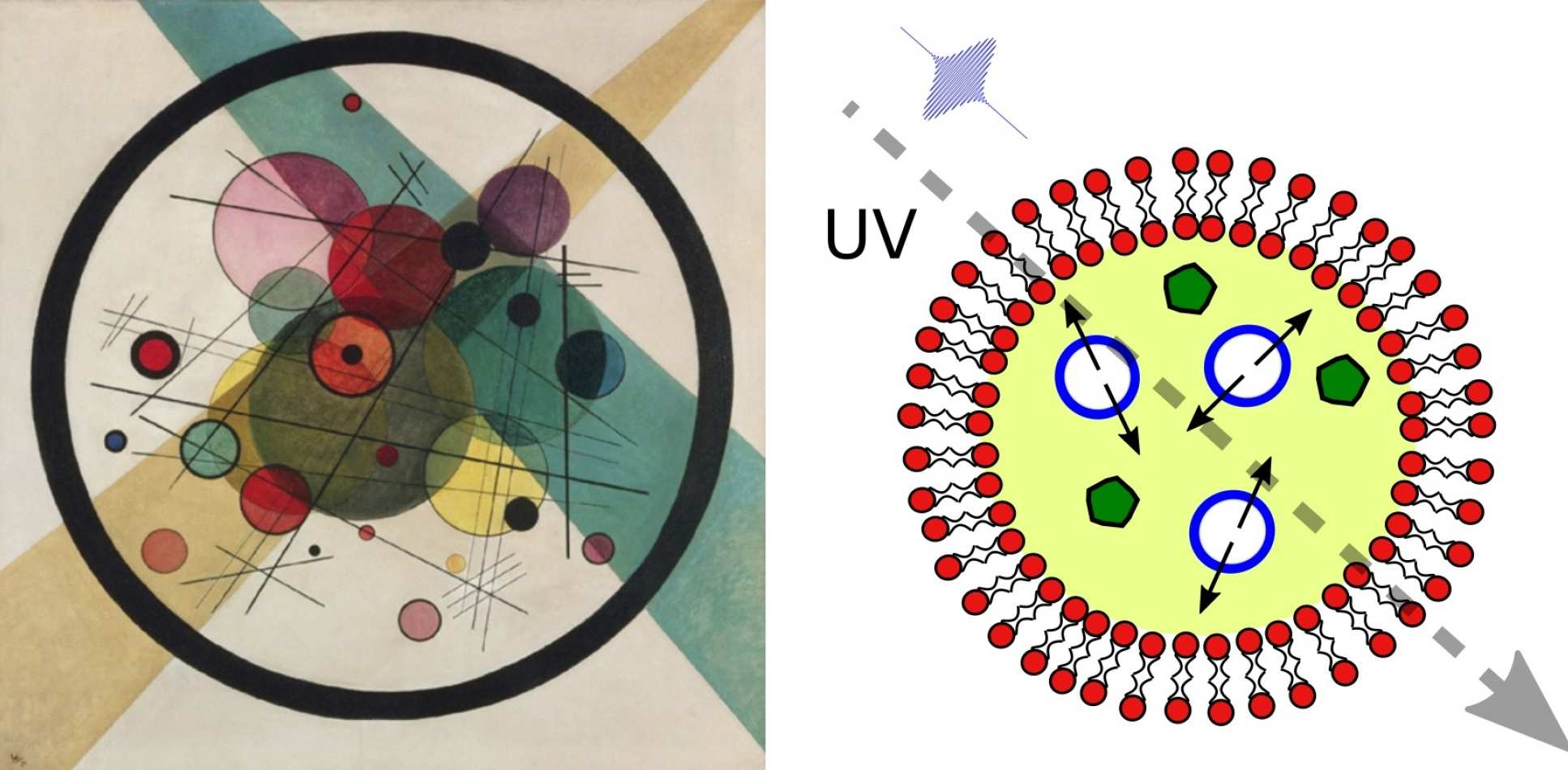 A Kandinsky painting of circles and lines on the left, and an illustration of the nested vesicles on the right