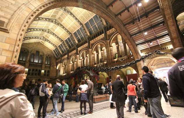 Entrance hall to the Natural History Museum