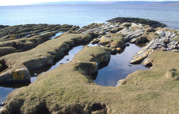 grass over rock pools by the sea