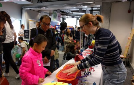 CPG member describes a phage model to a child at the Imperial Festival