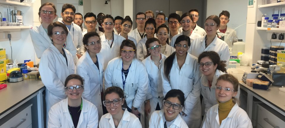 Lab members celebrating diversity on International Day of Women and Girls in Science