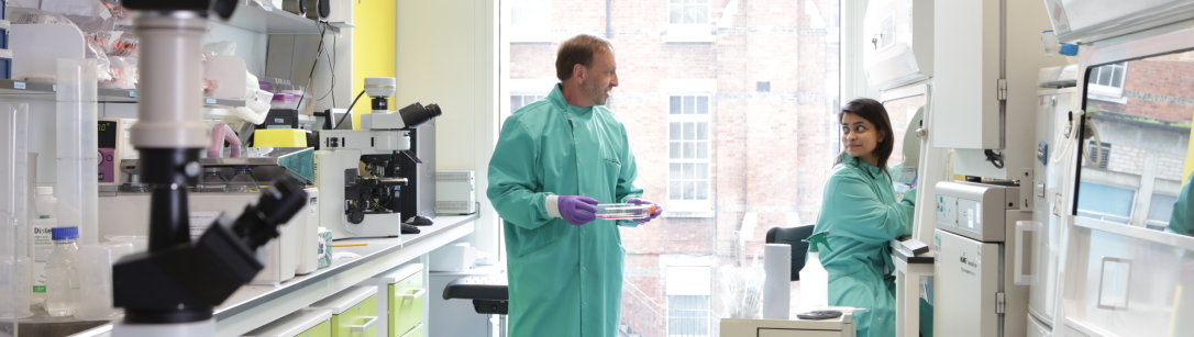 Two researchers discussing a sample in the laboratory