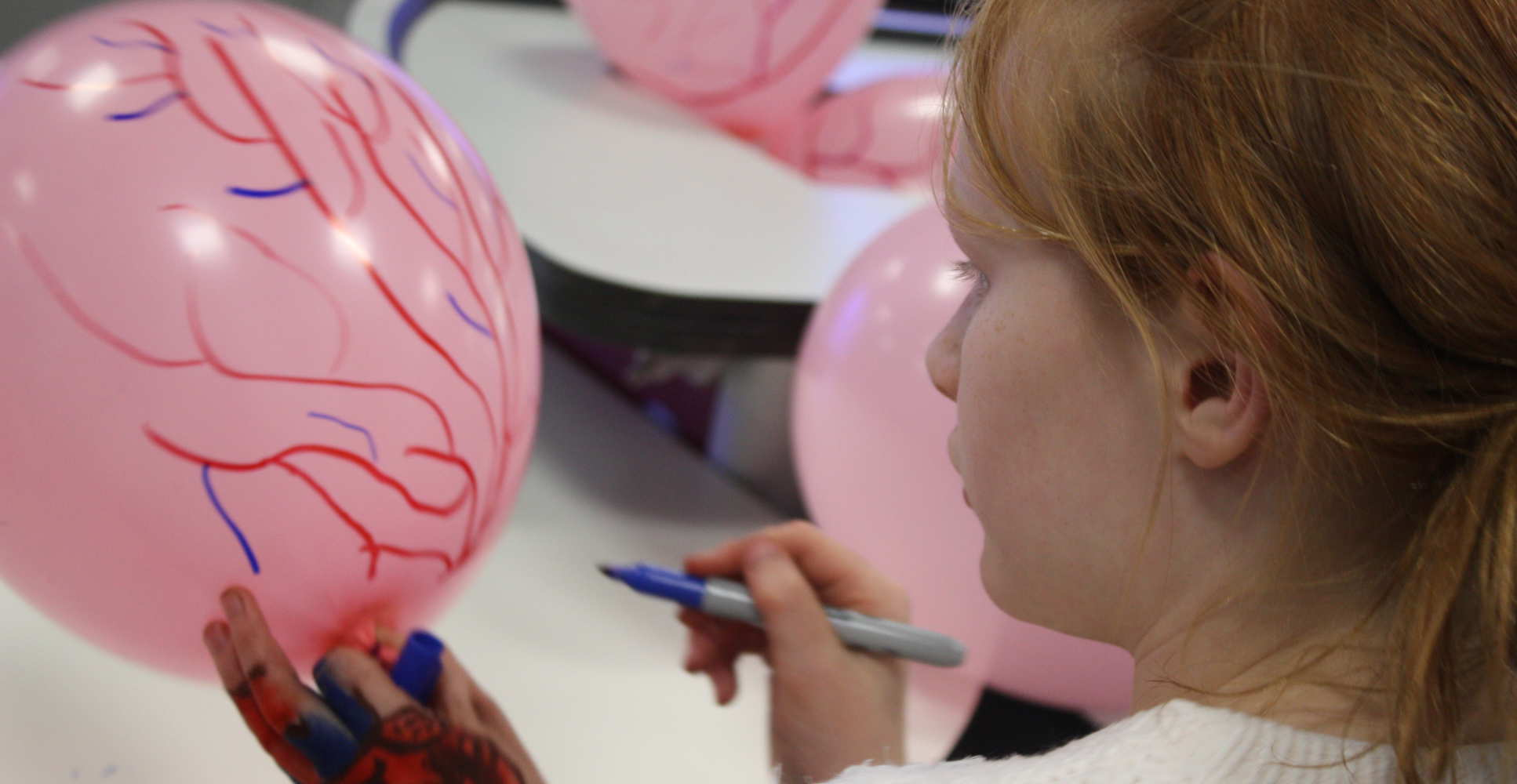 Child draws blood vessels on balloon