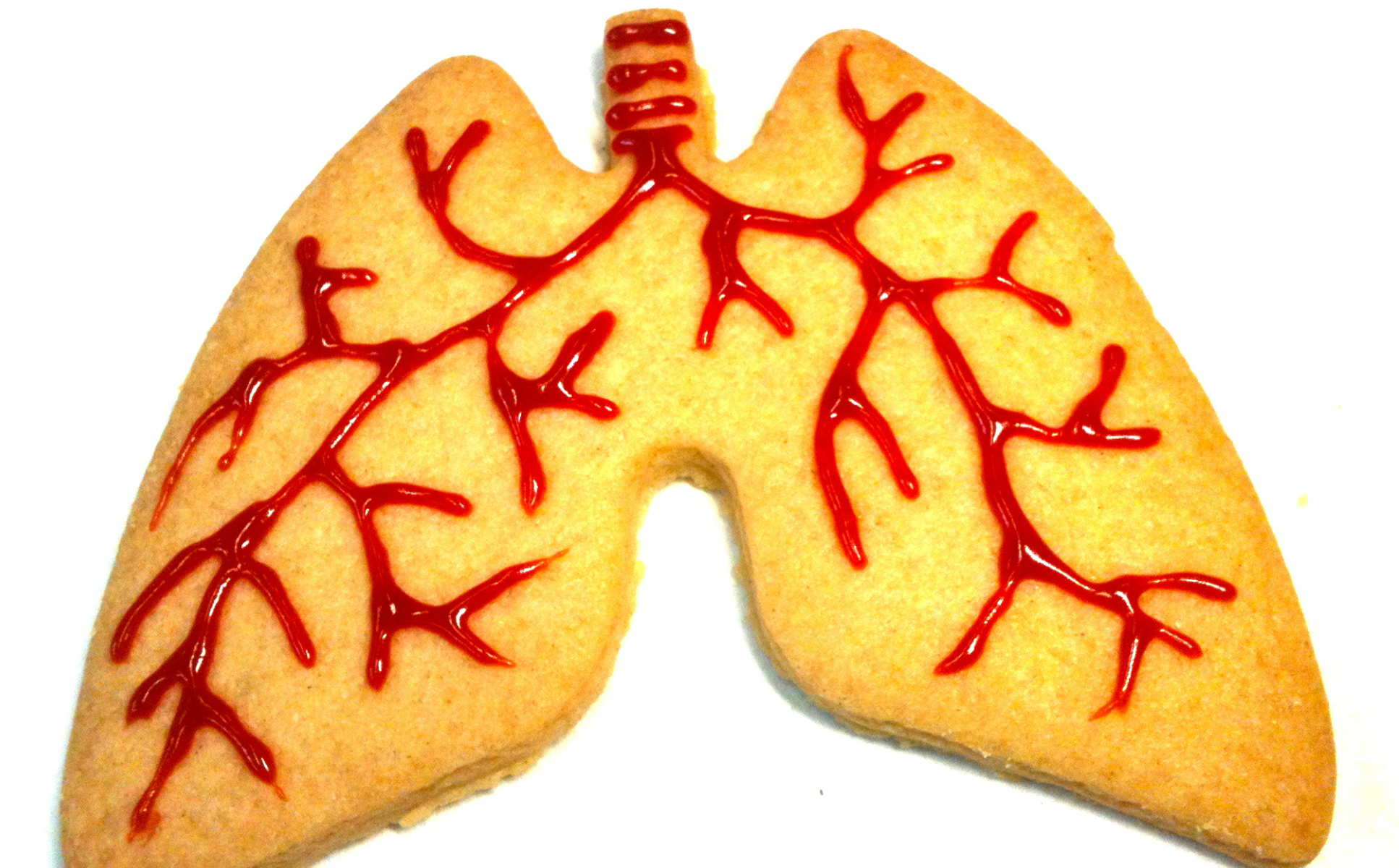Biscuit in the shape of lungs