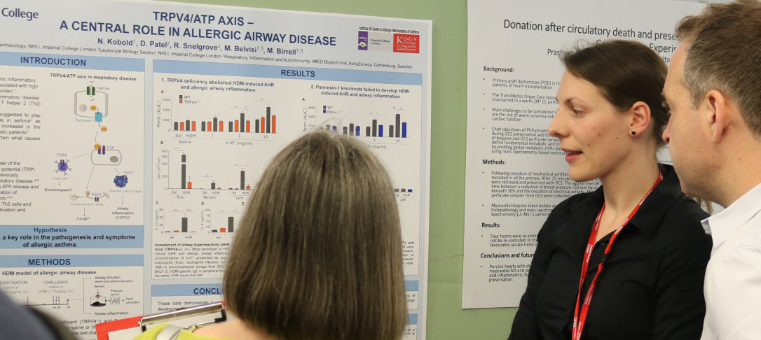 Researcher looks at poster