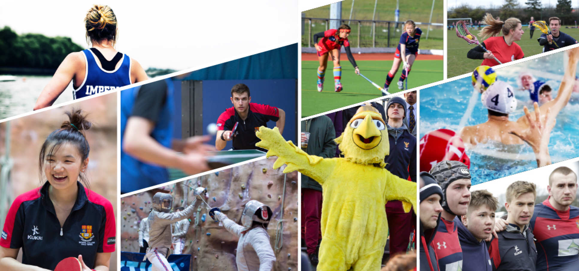 Services of sports clubs: a selection of sites