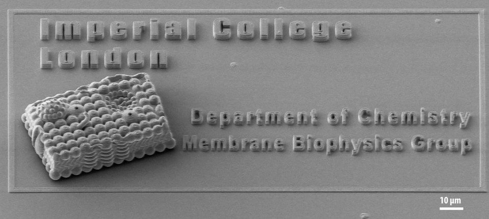Microscale 3D printing of a cell membrane by Dr Tatiana Trantidou, Postdoctoral Research Associate, Membrane Biophysics, Dept of Chemistry