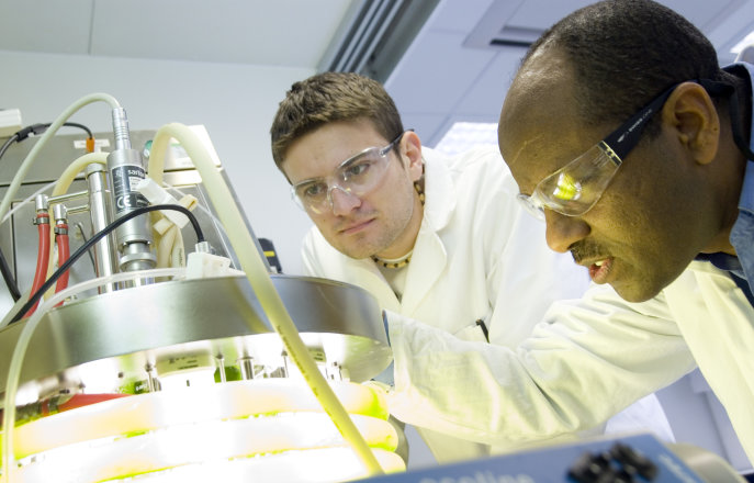 Two researchers working in the Energy Futures Lab