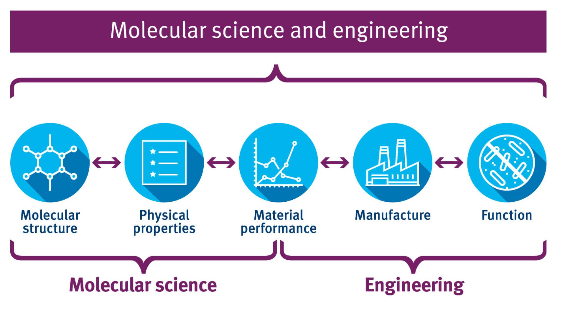 Transatlantic collaborations in molecular science and engineering ...