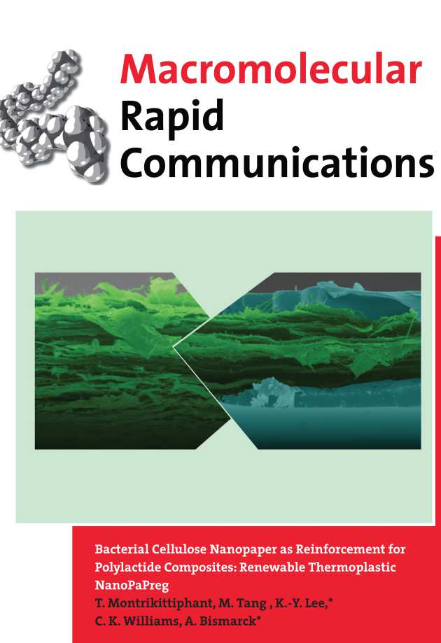 Macromolecular Rapid Communications 2014