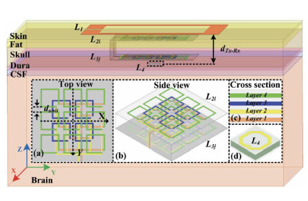 Robust wireless power transfer to multiple mm-scale freely-positioned Neural implants