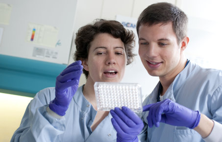Two researchers discussing a sample tray