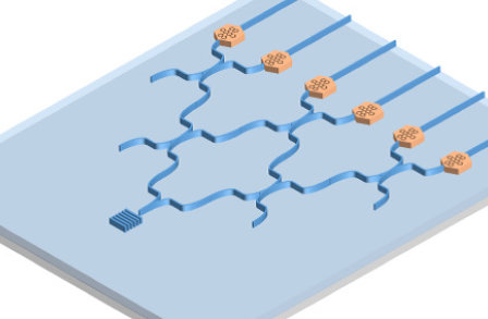 An array of waveguide-coupled molecules