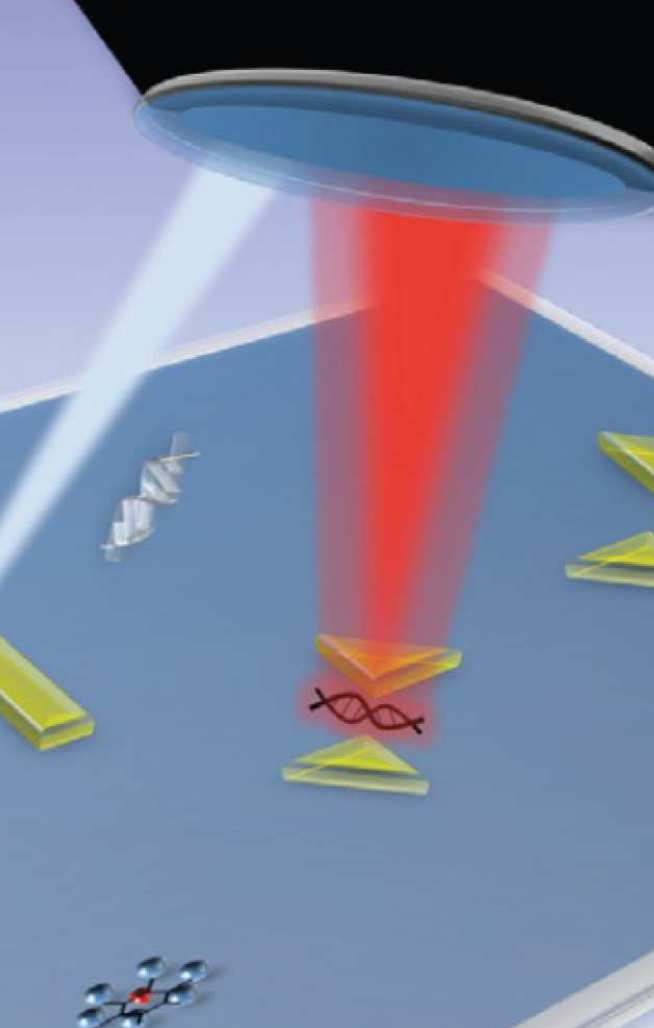 Plasmonic nanoantennas with molecules placed into electromagnetic hot spots for enhanced biological sensing