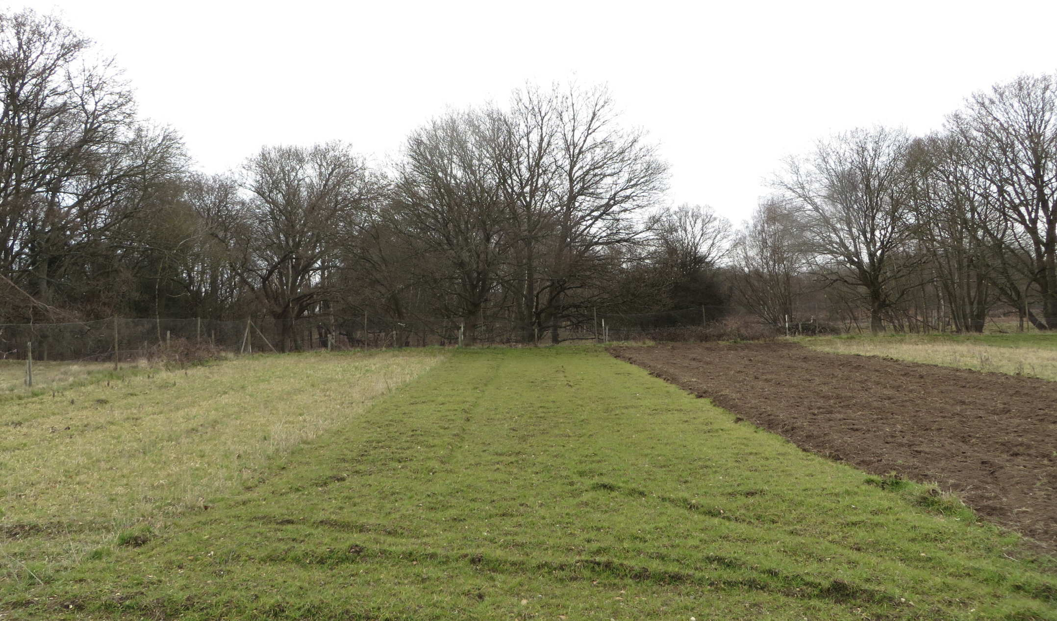 Pound Hill cultivation strips