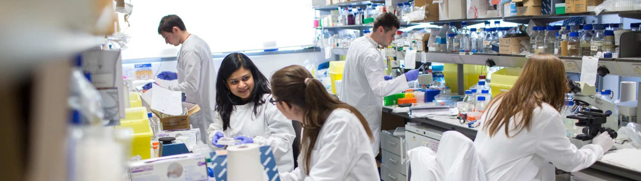 MSc Reproductive and Developmental Biology   Imperial College London