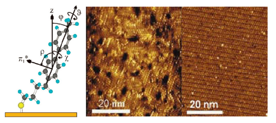 Self-Assembled Monolayers (SAMs)