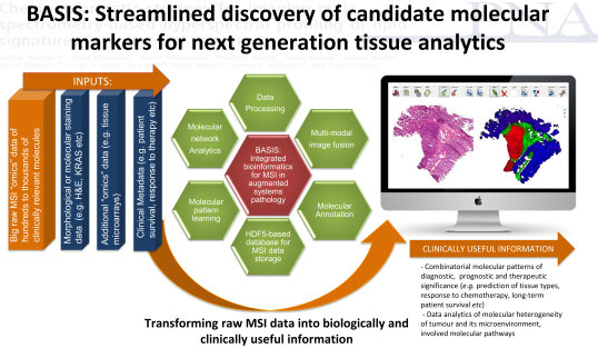 Bioinformatics platform for chemically enhanced pathology