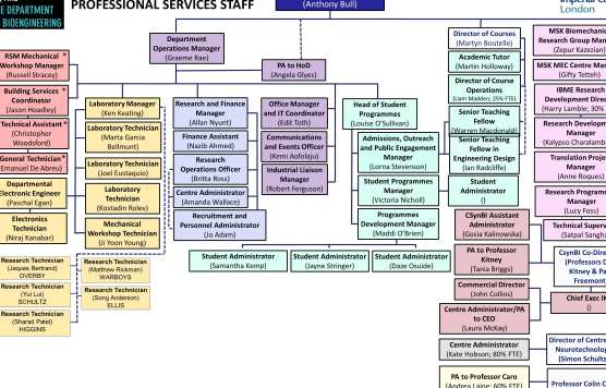 Professional services staff org chart (Nov 17)