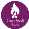 Clean Fossil Fuels