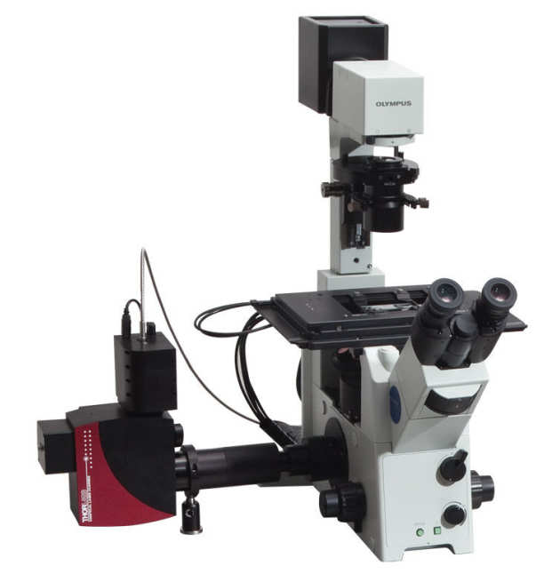 UV Confocal Laser Scanner Fluorescence System, Thorlabs