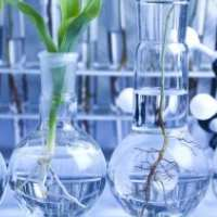 Biosciences and biotechnology